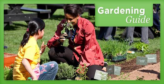 lm_gardening-image